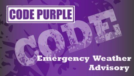 Code Purple logo