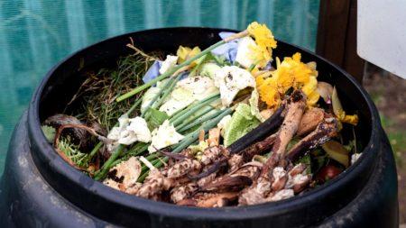 full composting bin