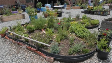 asheville community garden