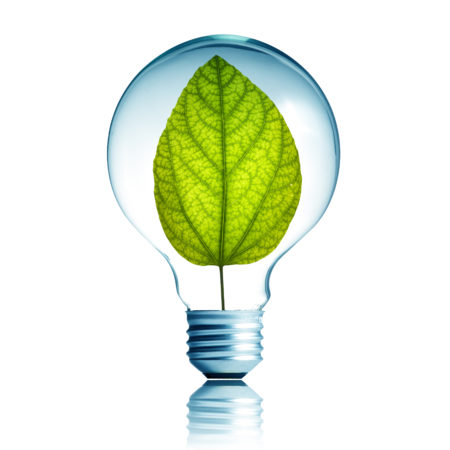 green energy concept of leaf inside a lightbulb
