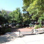 pritchard park in asheville nc