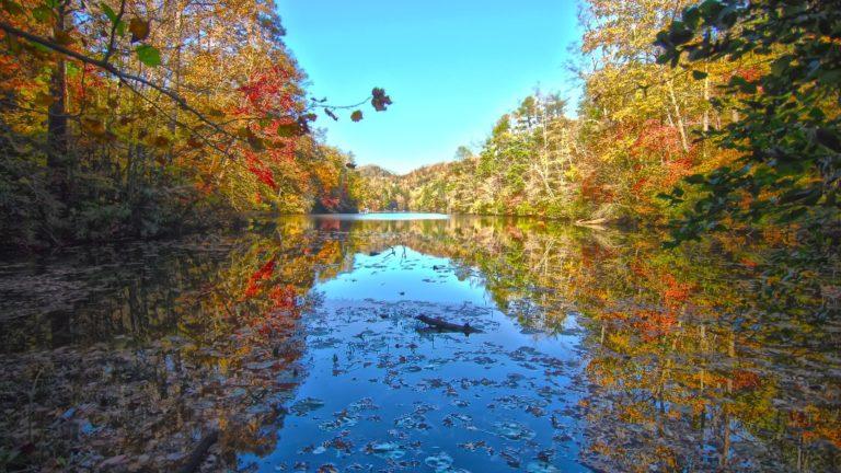 lake in asheville