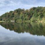 Azalea Park Pond Photo