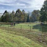 Azalea Dog Park Photo