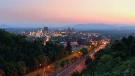 Asheville skyline and trees