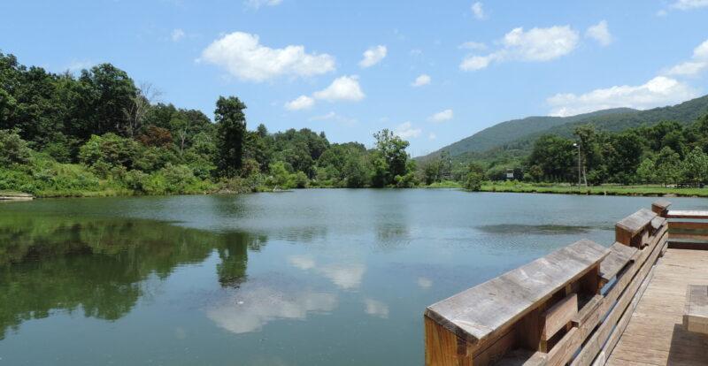 Azalea Park Pond