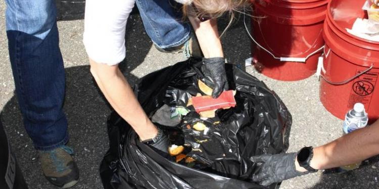 Asheville food waste audit image